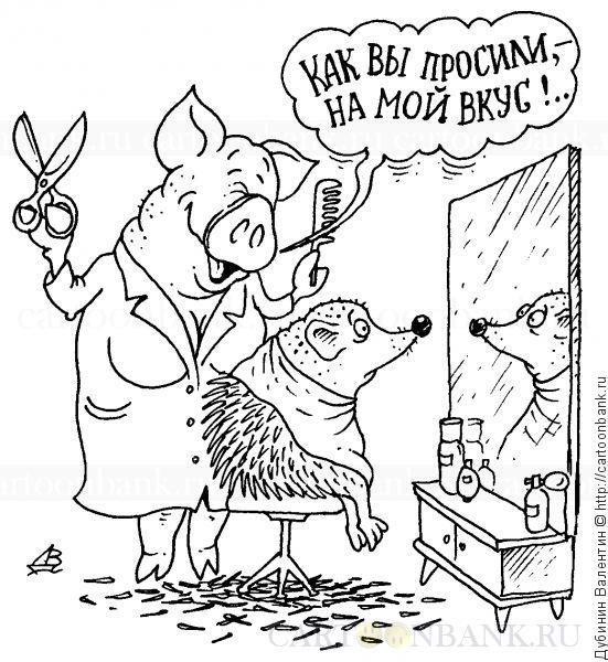 Карикатура. Стрижка. Свинья парикмахер подстригла ёжика на свой вкус. стрижка, парикмахер, ножницы, свинья, ёжик, причёска, парикмахерская